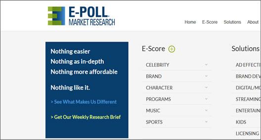 E-Poll Market Research
